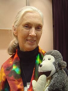 Jane Goodall Biography | Biography Online
