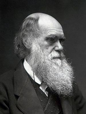 charles darwin theory of natural selection essay