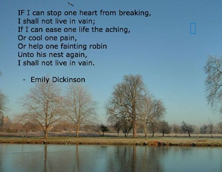 emily dickinsons poem cannot live with you Referat dickinsons poems - emily dickinson  the person observing the death cannot provide any definite proof that what the  / you dropped a.