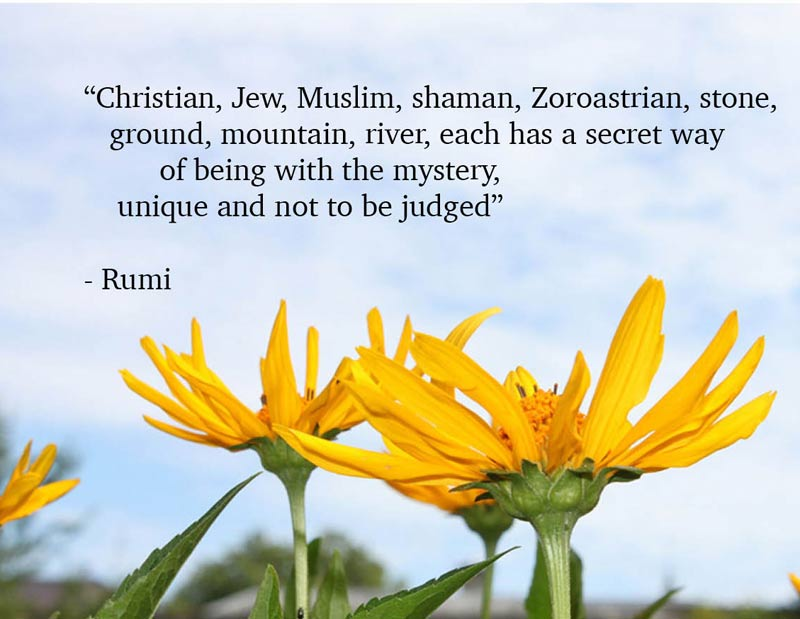 rumi--each-religion