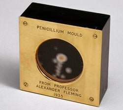 penicillin_mould_presented_by_Alexander_Fleming_to_Douglas_Macleod,_1935_(9672239344)